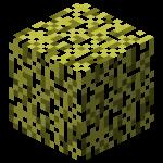 Золотая листва (Aether).png