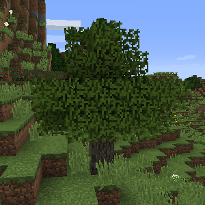 Оливковое дерево (Rustic).png