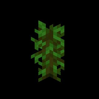 Саженец джунглей.png