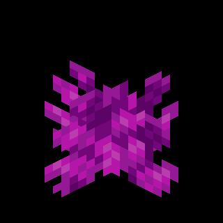 Пузырчатый коралл.png