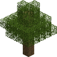 Дерево (дуб).png
