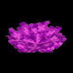 Пузырчатый веерный коралл.png