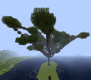 Дерево акации.png