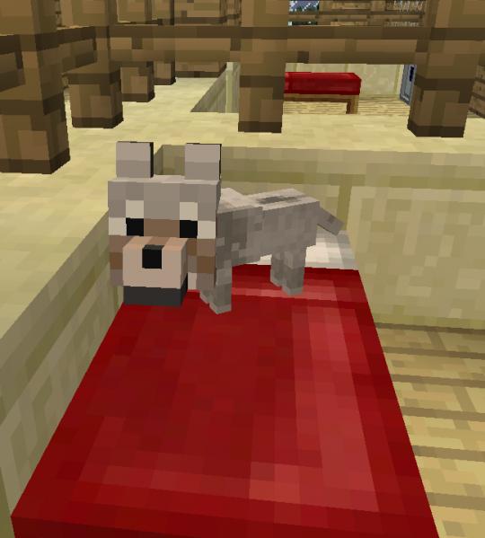Щенок волка.png