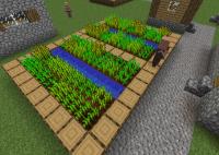 Ферма большая.png