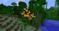 Джунгли во время пожара.png