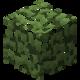 Берёзовая листва (до Texture Update).png