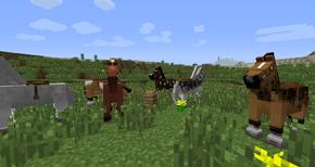Несколько лошадей.png
