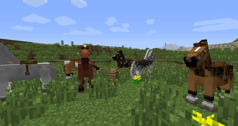 Файл:Несколько лошадей.png
