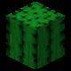 Кактус (до Texture Update).png