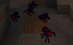 TTFРоевой паук.jpeg