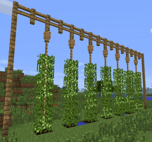 Файл:Посадки хмеля (GrowthCraft).png