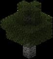 Осины (TerraFirmaCraft).png