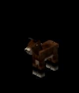 Жеребёнок мула.png