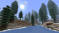 Snowy Coniferous Forest.png