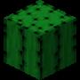 Cactus-Pre Alpha 1.0.11.png