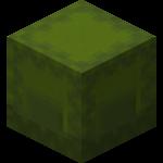 Зелёный шалкеровый ящик.png