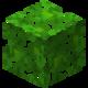 Джунглевая листва.png