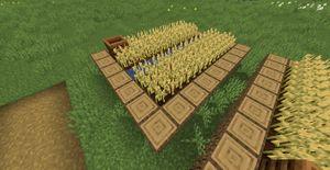Villworkfarm1.jpg