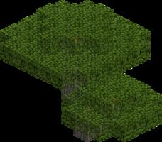 Дерево (акация).png
