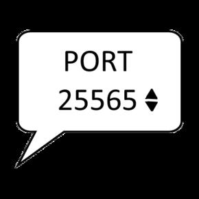 Логотип (Custom LAN).png