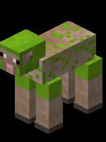 Лаймовая стриженная овца.png