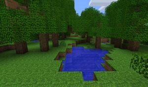 Сезоний ліс.jpg