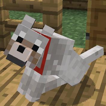 一隻狼正在向玩家祈求(Beg)