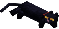 Lying down Black Cat with Red Collar.png