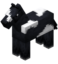 Black Horse with White Field JE5 BE3.png