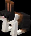 Harelequin Rabbit.png