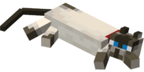 Lying down Siamese Cat with Red Collar.png