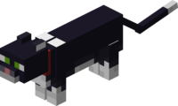 Tamed Tuxedo Cat with Red Collar.png