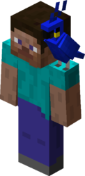 Blue Parrot on Steve.png