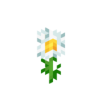 Oxeye Daisy JE2 BE2.png