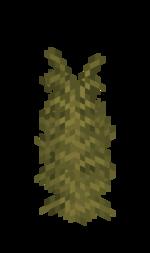 Desert Large Fern.png