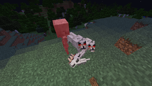 Wolves attacking skeleton