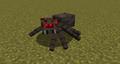 Live Spider.png