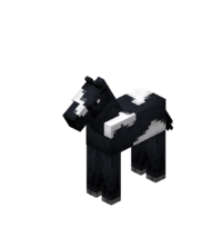 Baby Black Horse with White Field.png
