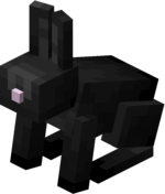 Black Rabbit JE2 BE2.png