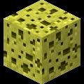 Sponge JE1 BE1.png