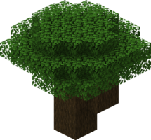 Dark Oak Tree.png
