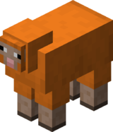 Orange Sheep BE5.png