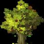 Fruitwoodsapling.png