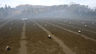 Farm Field.jpg