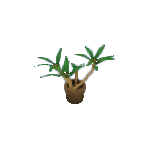 Plant-6.png