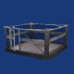 Boxing Ring-1.png