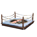 Wooden MMA Ring-1.png