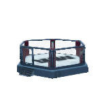 MMA Hexagon Ring-1.png