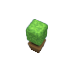Plant-8.png